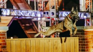 Two Rivers to produce A+E Networks Top Dog for UK, Ireland