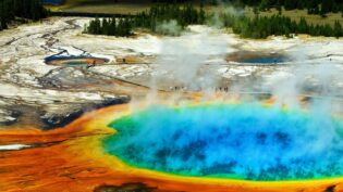 Channel 5 boards Wildflame Yellowstone doc